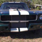 1965 groen
