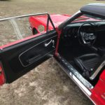 1966 Poppy Interior Door